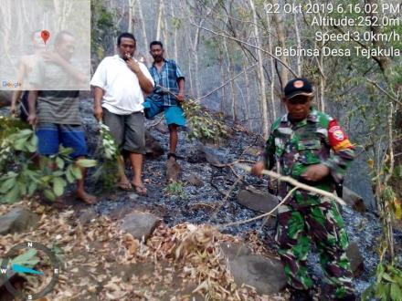 Pemadaman Kebakaran Hutan Desa Tejakula Akibat Kemarau